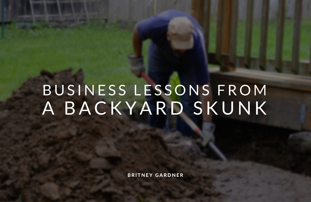 Skunk In Backyard 5 business lessons from a backyard skunk - personal brand